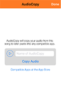 Audiocopy screen